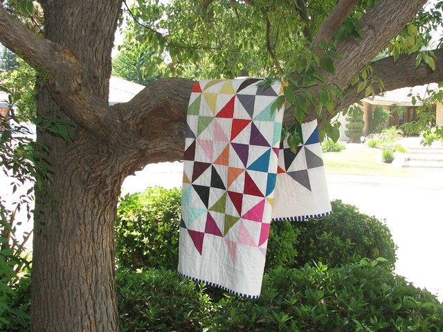 Kona Hourglass quilt in tree