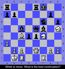 Chess Middlegame Puzzle - 20 (ChessNetwork) Tags: chess puzzle problem practice puzzles problems traps trap tactics tactic middlegame chessnetwork