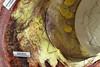 Gefäßmodell (BegehbareOrgane) Tags: billing organe medizin stent aorta offenbach plastiken chirurgie überdimensional gefäss begehbareorgane organmodelle