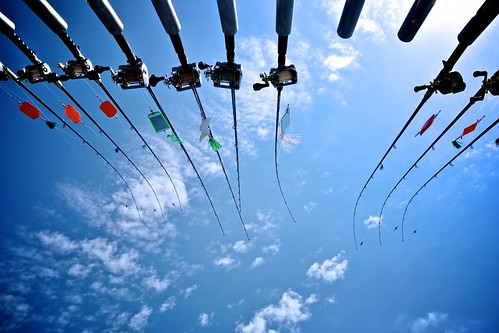 Fishing Rods in the Sky