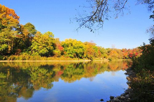 Fall Fishing on the Bayfield River