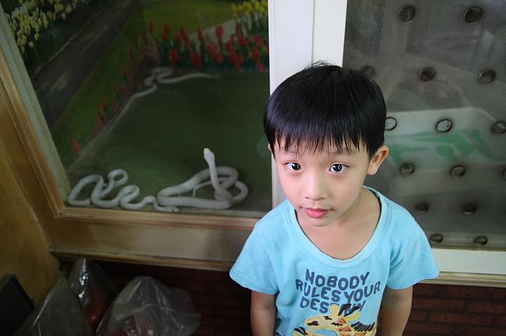 楊梅白蛇廟003