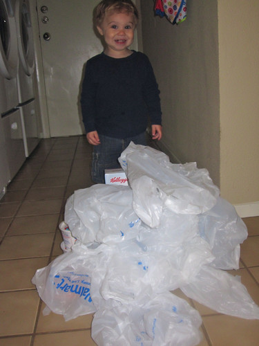 Too many plastic bags