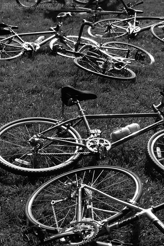 Bicycles in Grass