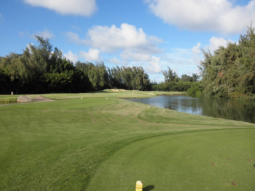 Turtle Bay Colf Course 343