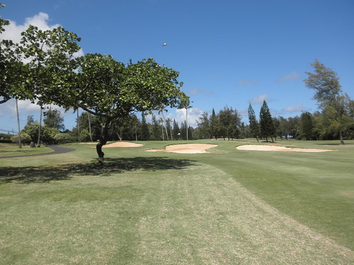 Turtle Bay Colf Course 176