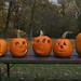 pumpkin_carving_20111030_21128