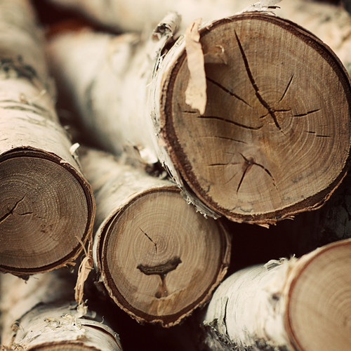 birch wood 5x5