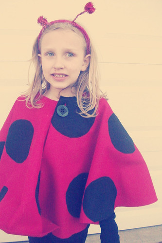 ladybug (thinking about candy?)