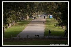 "Saturday morning walking <a style=""margin-left:10px; font-size:0.8em;"" href=""http://www.flickr.com/photos/66444177@N04/6303933078/"" target=""_blank"">@flickr</a>"