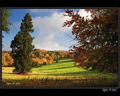 Autumn Days. (Picture post.) Tags: autumn trees clouds landscape shadows bluesky fields paysage arbre soe oaktrees conifer beechtrees mygearandme mygearandmepremium mygearandmebronze mygearandmesilver blinkagain