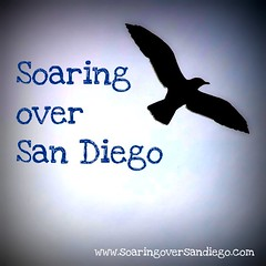 Soaring over San Diego