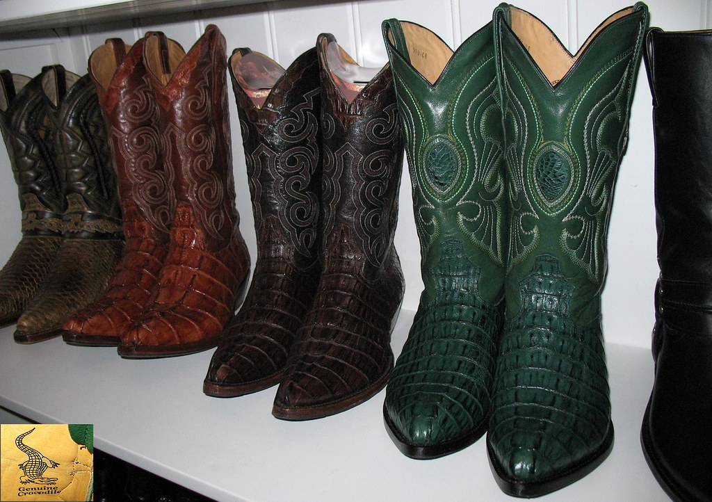 The World S Newest Photos Of Caiman And Sendra Flickr