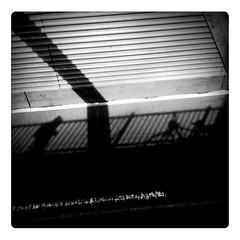 dal ponte di brookyn , new york (DrMonia) Tags: shadow bw newyork lines geometry ombra monia bycicle bicicletta iphone geometrie linee lemecam drmonia