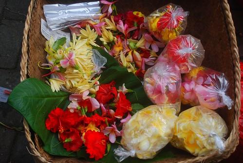 Bali flowers 2