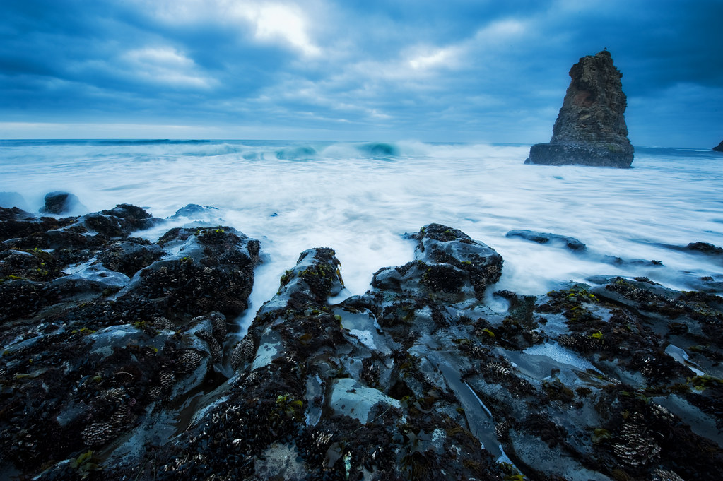 Davenport rock tendrils