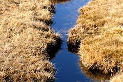 Col de Vor (Elysium 2010) Tags: november river alpesvaudoises berneralpen coldevor