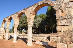 Anjar, Umayyad city, al-Walid I, 705-15, along the decumanus maximus (7) (Prof. Mortel) Tags: lebanon umayyad anjar