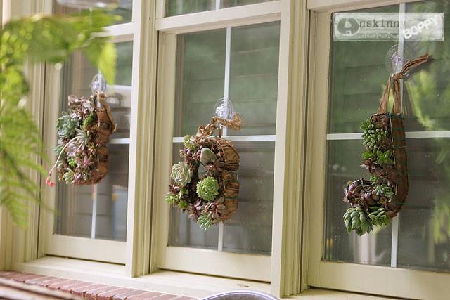 succulent wreath diy tutorial