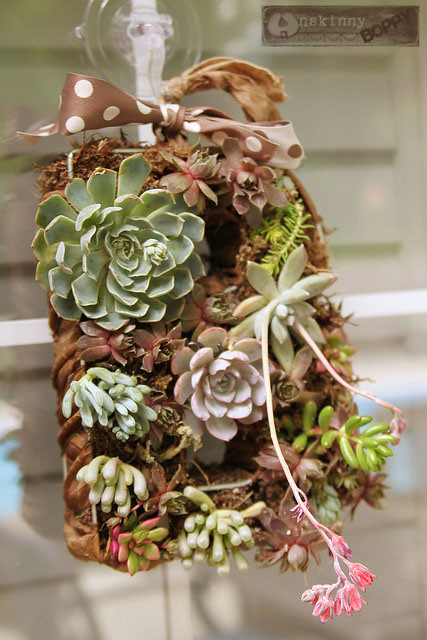 succulent wreath diy tutorial