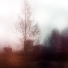 Dagens foto - 041: Nowhere (petertandlund) Tags: autumn sky music house color window fog clouds square branches nowhere dream foggy dreamy 365 therapy katrineholm 41365