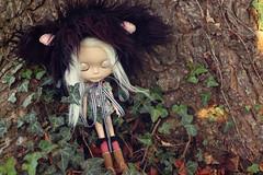 Twilight Dreams - 322/365 ADAD 2011