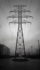 Wired (MiniSQUL) Tags: bw toronto tower film silhouette 35mm iso100 waterfront hydro wires electricity poles ilforddelta100 nikonosv TGAM:photodesk=silhouette2011 commissionersrd