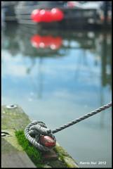 The Tie - Steveston in Bokeh N8474e (Harris Hui (in search of light)) Tags: canada reflection water vancouver boats nikon marine dof bc bokeh harbour tie rope richmond artsy simplicity simple knots mundane steveston 50mmf14 d300 polarizingfilter fixedlens standardlens largeaperture primelens nikon50mmf14 stevestonharbour nikonuser beautyinthemundane nikond300 harrishui vancouverdslrshooter tyingtheelementsinacomposition interestingthingaboutbokeh tieintheknots hookonsomething stevestoninbokeh whatarethepurposesofbokeh