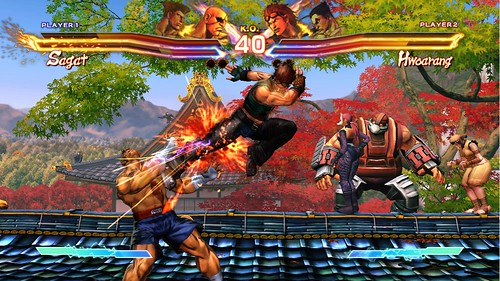 E32011_Screen9_bmp_jpgcopy.jpg