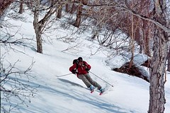 Kamčatka - lyžování a heliskiing