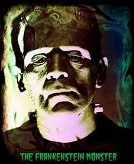 Boris Karloff as the Frankenstein Monster Digital Art (Treasures From Paul's Basement) Tags: frankenstein karloff digitalartavataruniversalmonsters