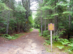 Algonquin - Highlands Trail 05 Photo