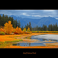 Banff National Park #1287 (alexander.garin) Tags: autumn fall nature landscape rockies canadianrockies bestcapturesaoi elitegalleryaoi