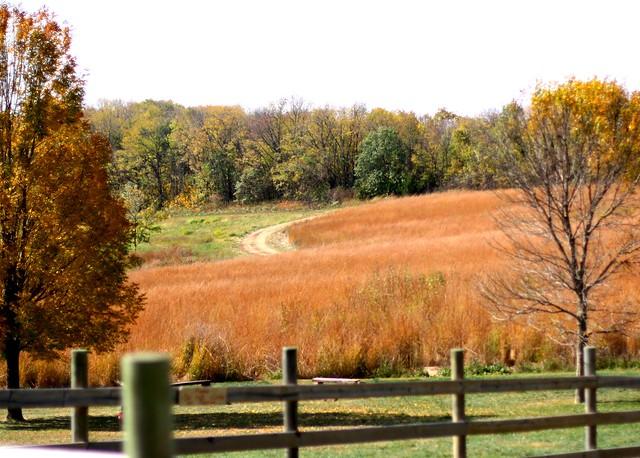 fall-2011