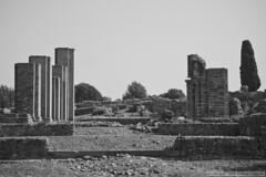 Itlica en negro I (H. Delgado) Tags: sevilla romano ruinas texturas santiponce itlica ruinasitilca