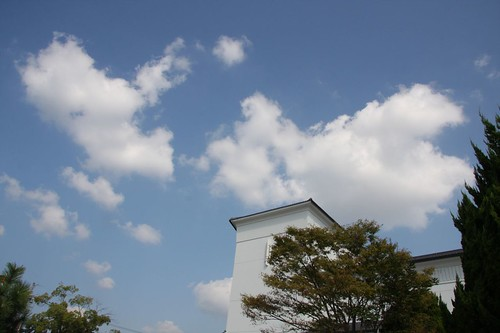 青い空流れる雲 / The cloud which flows through the blue sky