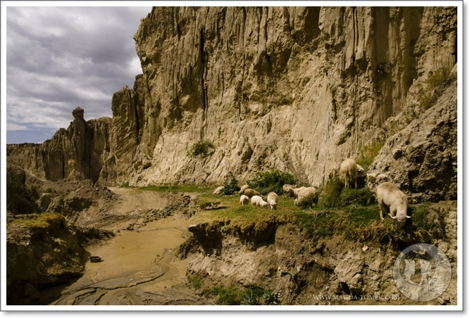 2011 10 12_Magda i Tomek Dookola Swiata_Valley de la Luna - Chacaltaya_DSC_0014