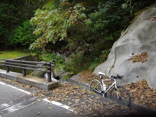 鈴木の滝 #1