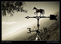 2011-365/291 - Weather Vane to the Sky (DonMcKee) Tags: ca blackandwhite bw silhouette us blackwhite sanjose weathervane odc project365 geo:city=sanjose camera:make=canon geo:state=ca exif:make=canon camera:model=canonpowershotg9 exif:focal_length=74mm exif:iso_speed=80 ourdailychallenge exif:model=canonpowershotg9 exif:lens=74444mm geo:countrys=us exif:aperture=28 3652011 geo:lat=37384554991814 geo:lon=12180362552404