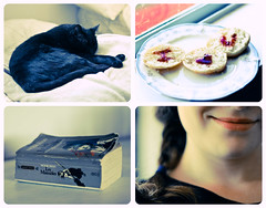 My Day (Spreading Wings Photography) Tags: morning windows sleeping smile face les cat four baking bed soft photos biscuit roll iloveyou panels etsy watercolors jam inspiring braid pajama myday miserables i3u tetraptych