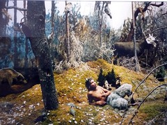 deep in the forest... (canecrabe) Tags: fairytale pan diorama fort conte mrpan cutlog matsbacker