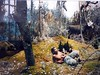 deep in the forest... (canecrabe) Tags: fairytale pan diorama forêt conte mrpan cutlog matsbacker