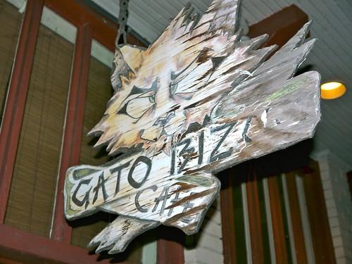 Gato Bizco