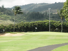 Turtle Bay Colf Course 114