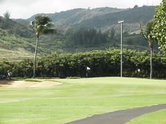 Turtle Bay Colf Course 114