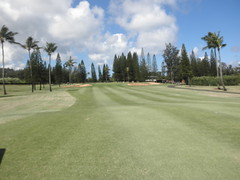 Turtle Bay Colf Course 166