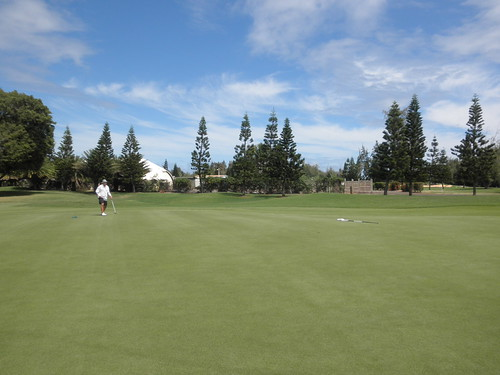 Turtle Bay Colf Course 238