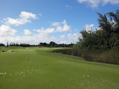 Turtle Bay Colf Course 305