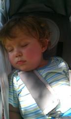 KFP Asleep