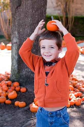 Pumpkins 2011-0765 by Mainline Mom